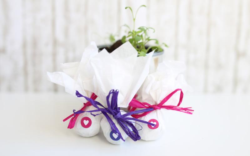Seedballs – kleine Geschenke mit großer Freude