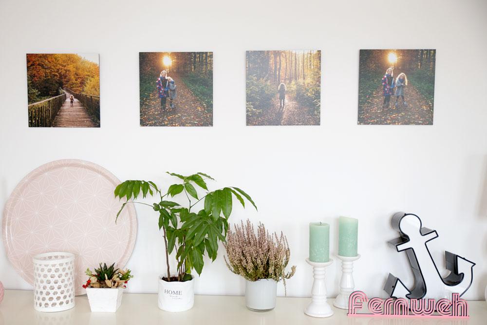Fotowand_Foto_Premio4