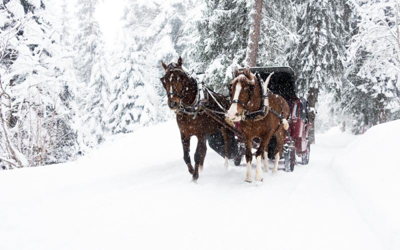 Skifahren in der Schweiz – oder auch: Verliebt in Laax