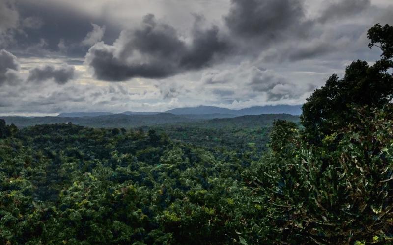 Yogalehrerausbildung in Sri Lanka – Woche drei