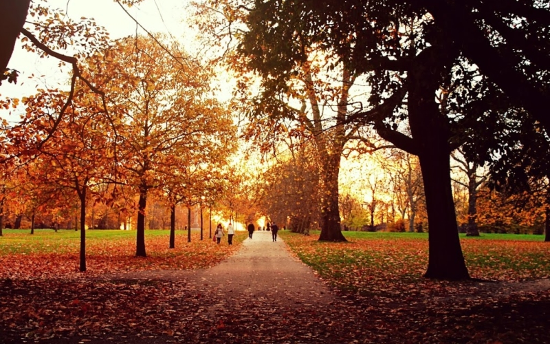 London – Ein Spaziergang durch den Hyde Park