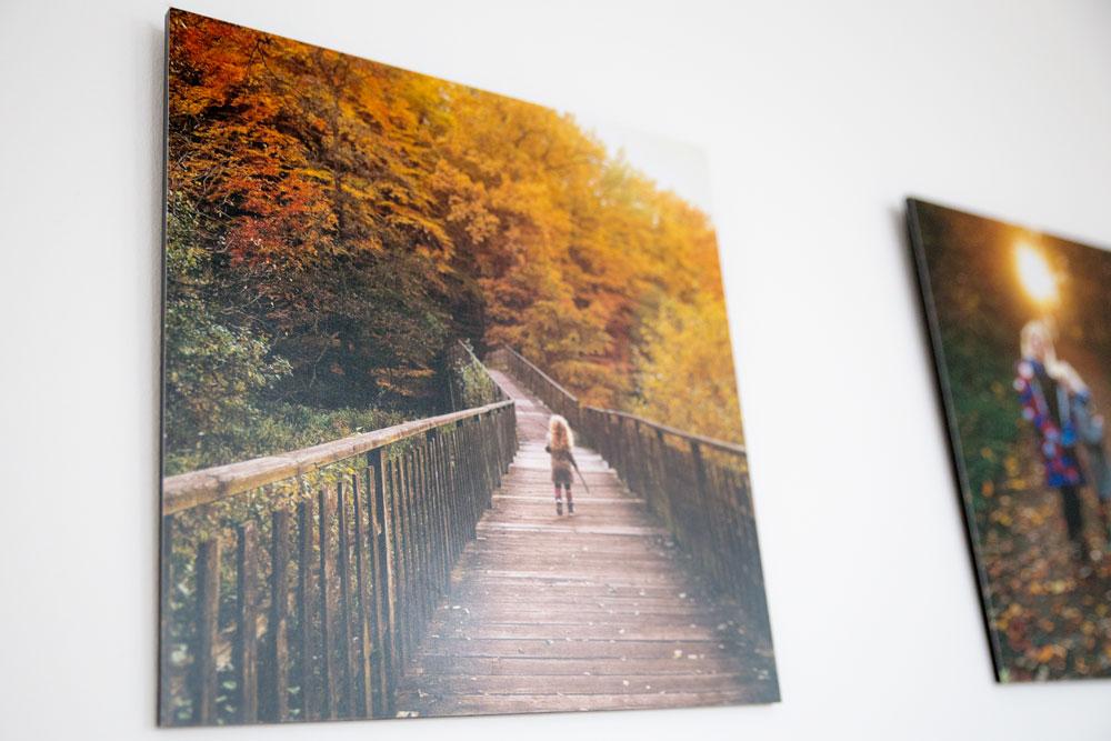 Fotowand_Foto_Premio1